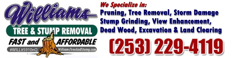 Williams Tree & Stump Removal - Pruning, tree removal, cabline/bracing, stump grinding, view enhancement, dead wood removal.